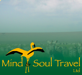 Mind & Soul Travel Ltd