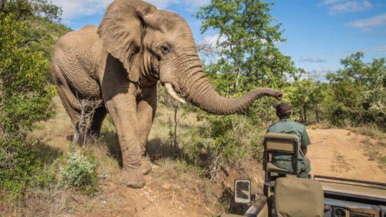 H & A Unique Safaris Ltd