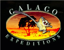 GALAGO EXPEDITIONS LTD
