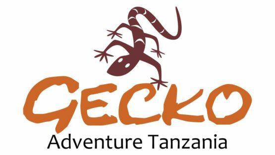 Gecko Adventure Tanzania