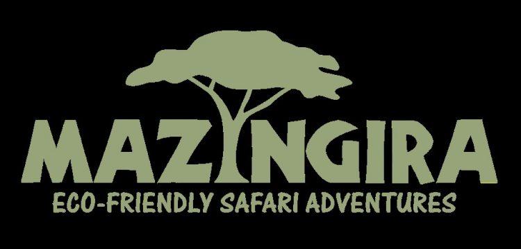 MAZINGIRA ECO-FRIENDLY SAFARI ADVENTURES